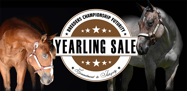 June 1st is Deadline to Enter 2020 NSBA BCF Yearling Sale