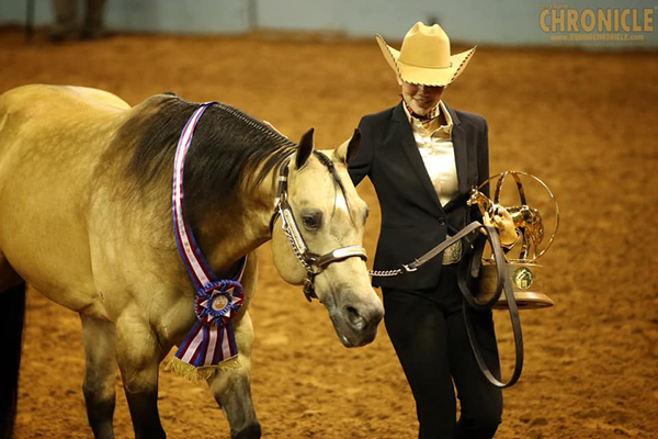 AQHA Youth Performance Halter World Champions Include Medows and Eddy
