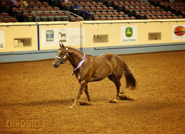 AQHA World Champions Include JoJo Roberson/14-18 Showmanship and Grant Mastin/14-18 L1 Western Riding