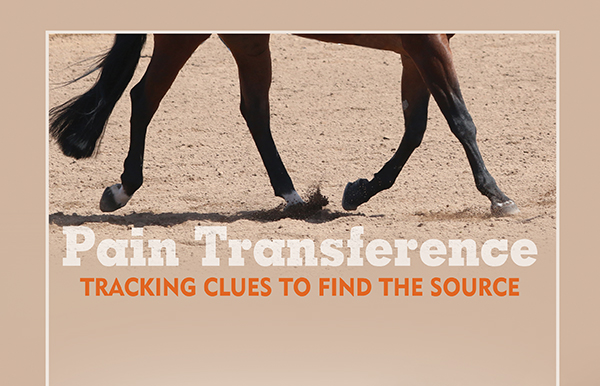 Pain Transference – Tracking Clues to Find the Source