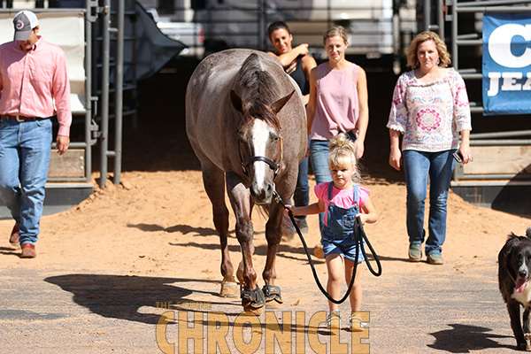 IEA Western National Finals Heads to APHA World Show