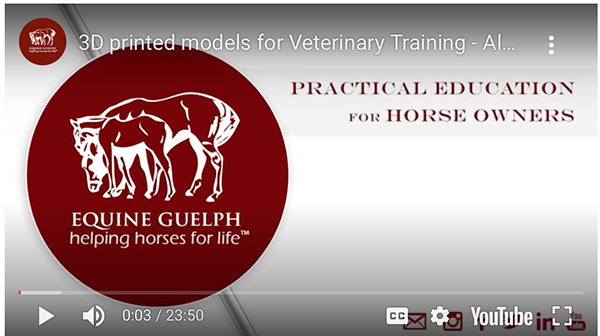 3-D Printing Research Creates Model of Equine Neck For Vet Training