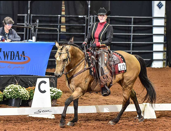 AQHA World Adds Dressage and Western Dressage Stakes
