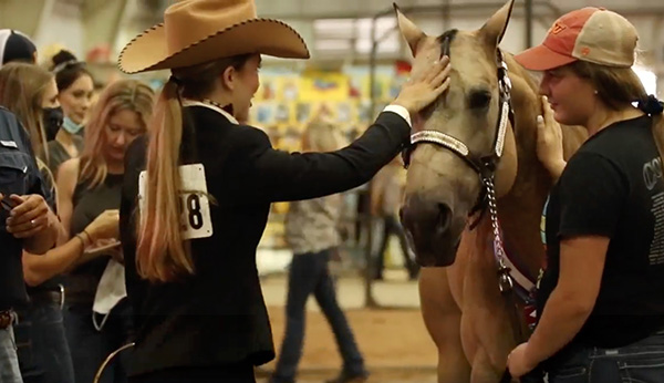 How Do We Measure a Horse's Quality of Life?