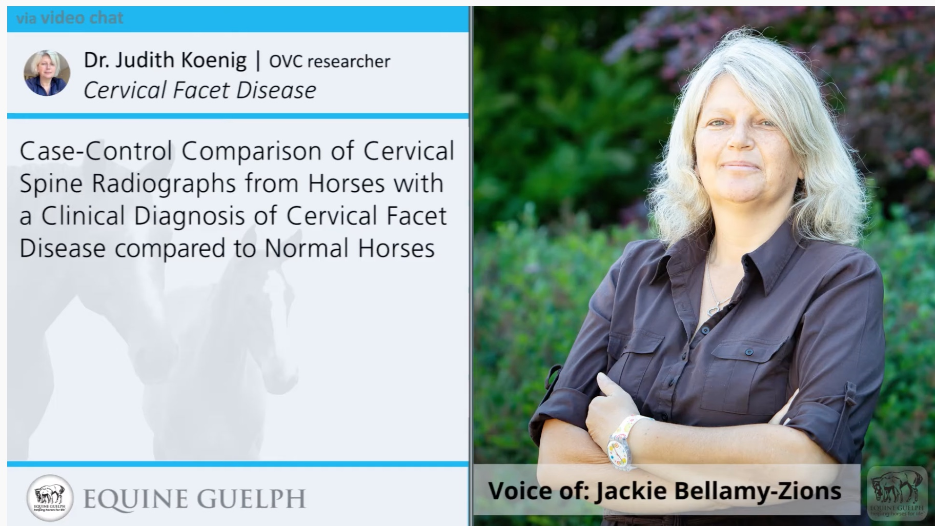 Research Study on Diagnostics For Equine Osteoarthritis of the Neck