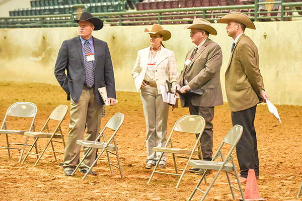 Around the Rings Dixie National EWD Show