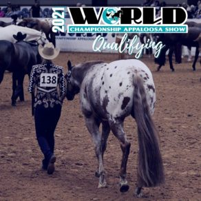 2021 ApHC World Show Waives All Qualifying Requirements
