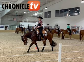 Winning Runs- MQHA Blind Horsemanship