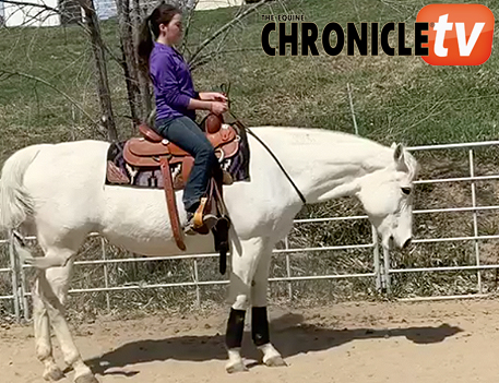 EC TV- Bridleless Horsemanship