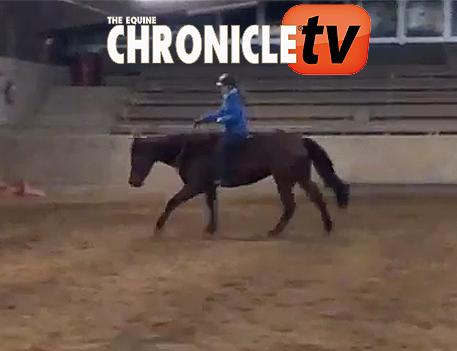 EC TV- Bridleless Western Riding
