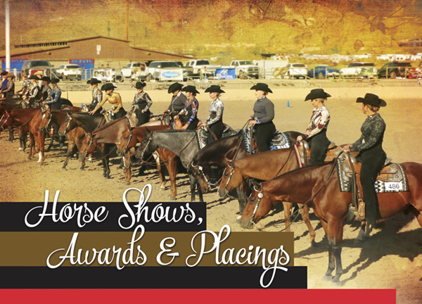 Horse Show Awards Placings – A Delicate Balance Of Recognition