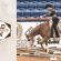 Enhancements to Intermediate Exhibitor Recognition at 2021 APHA World