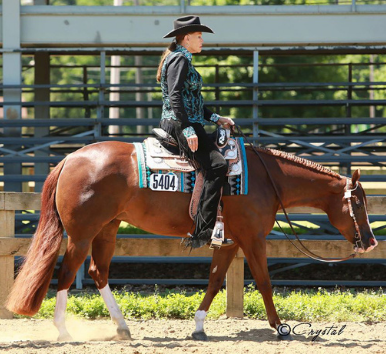 NSBA Funds New Program With Charitable Trust Donation From Lifetime Horsewoman