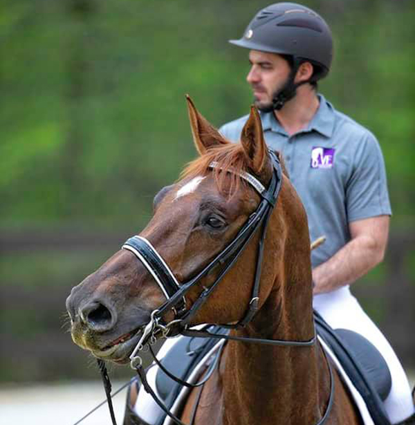 Tips For Staying Away From Barn Drama