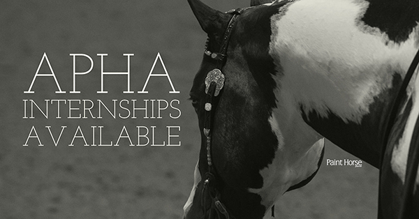 Apply by June 30th For APHA Fall Internship Program