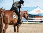 Around the Rings- Granite State Appaloosa Association Show