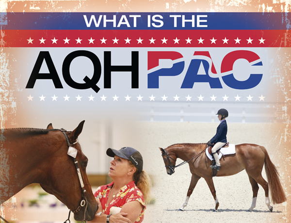 What is the AQHPAC?