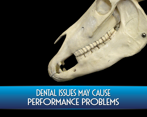 Dental Issues May Cause Performance Problems