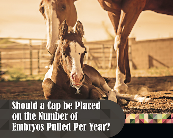 Should a Cap be Placed on the Number of Embryos Pulled Per Year?