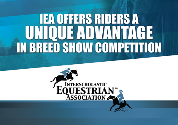 IEA Offers Riders a Unique Advantage in Breed Show Competition