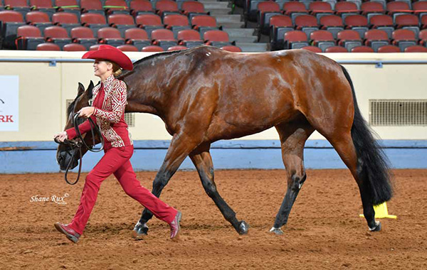 AQHYA Members to Host Toiletry Drive at Youth World Show