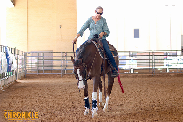 At HOT Horse Shows, Know the Signs of Heat Stroke